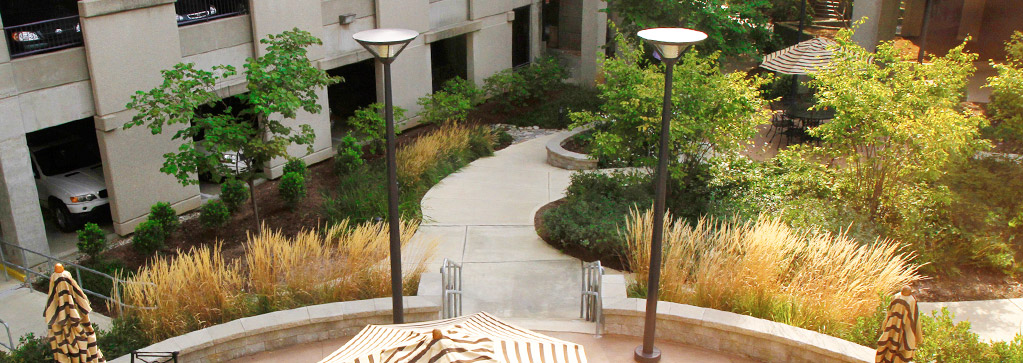 Louisville Commercial Landscaping Services